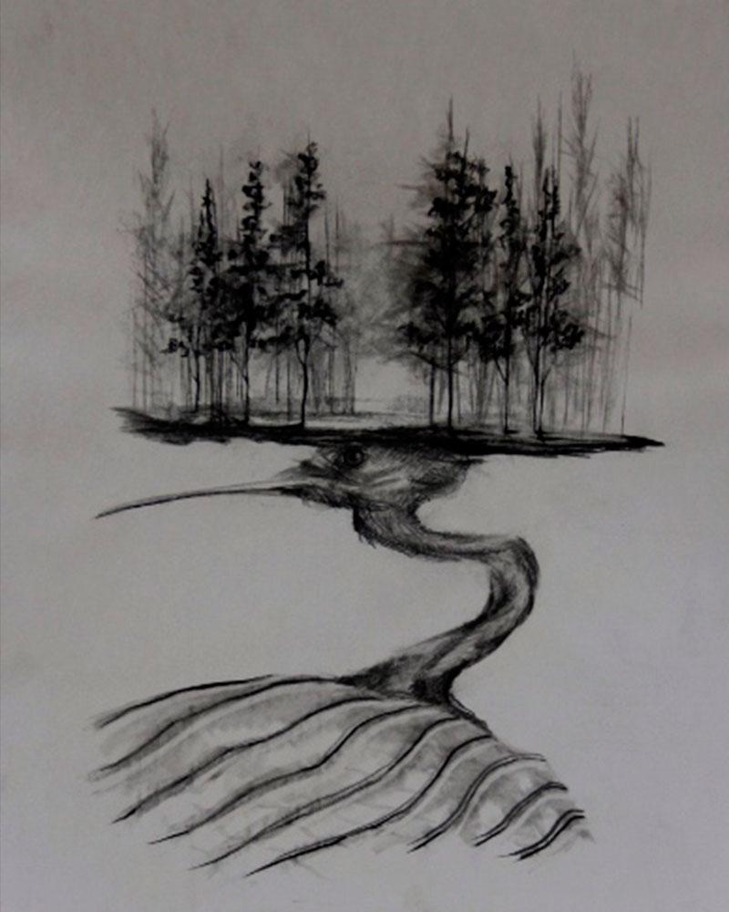 Obra, Isla con Alas 8 del Artista Roberto Jiménez Hidalgo