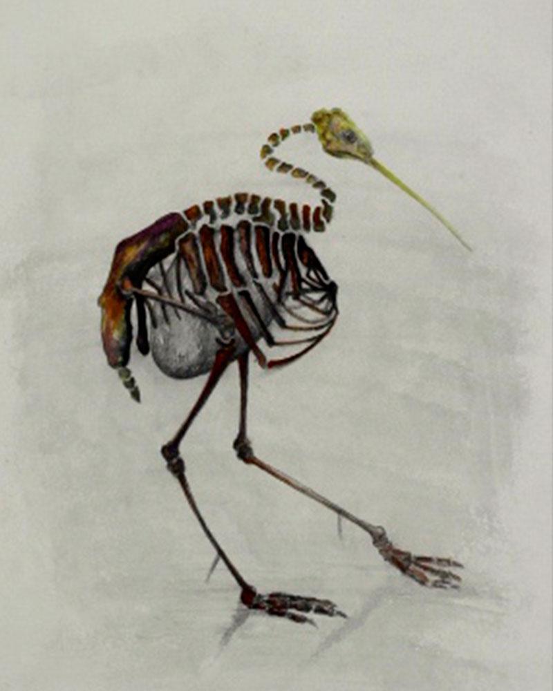 Boceto Liberfreeden Fosilizado del Artista Roberto Jiménez Hidalgo